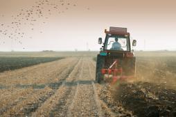 Suicide : les appels d'agriculteurs en détresse ont triplé en 2016