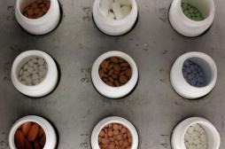 Génériques fabriqués en Inde : 700...