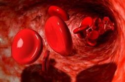 Prix Nobel : pourquoi les travaux des lauréats ont fait avancer la recherche contre le cancer ou l'anémie