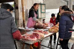 Grippe aviaire : la Chine placée sous haute surveillance