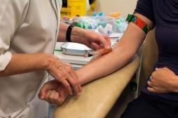 Hépatite A: l'épidémie touche 11000 personnes