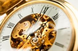 Leishmaniose : le parasite est plus virulent le soir