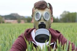 Glyphosate : un sénateur français estime les pesticides moins cancérigènes que la viande rouge