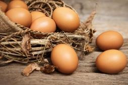 Cholestérol et maladies cardiaques : les oeufs seraient inoffensifs pour la santé