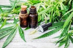 Maladie de Crohn: de l'huile de cannabis pour soulager ses symptômes