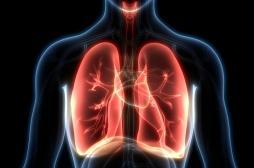 L'arrêt du tabac favoriserait l'apparition de cellules pulmonaires saines