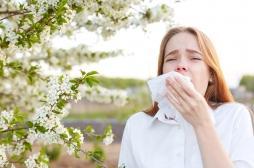 Allergies aux pollens : voici les bons réflexes à adopter