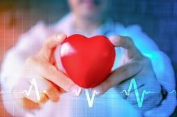 Comment les battements de notre cœur influent sur nos perceptions sensorielles