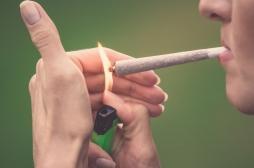 Cannabis récréatif : lancement d'une consultation citoyenne en ligne