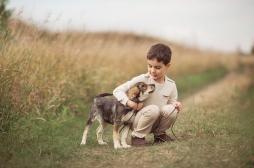 Schizophrénie : grandir avec un chien réduirait les risques