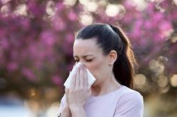 Pollens : pourquoi de plus en plus de personnes souffrent d'allergies respiratoires ?