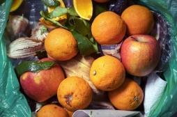 Gaspillage alimentaire : les fruits même abîmés restent bons pour la santé