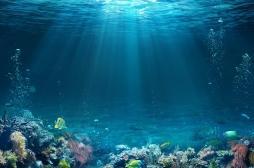 Antibiorésistance : le futur des antibiotiques dans les océans?