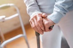 Problèmes de mobilité : multiplier les petits vaisseaux sanguins permet de récupérer