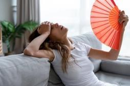 Canicule sur la France : la chaleur tuera bientôt plus que les maladies infectieuses