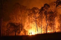 Le réchauffement climatique, prochain danger mondial pour la santé