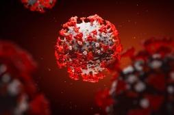 Traitement Covid-19 : l'Octofène, l'antibiotique testé en secret par l'institut Pasteur, bientôt en essai clinique