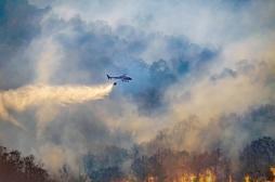 Particules fines: les feux de forêt plus toxiques que les gaz d'échappement