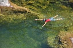 Parasite tropical urogénital: la Corse et ses touristes toujours menacés par la bilharziose