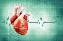 Insuffisance cardiaque : 4 propositions pour améliorer la prise en charge des malades