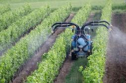 Pesticides: des distances d'épandage par rapport aux habitations dès janvier 2020