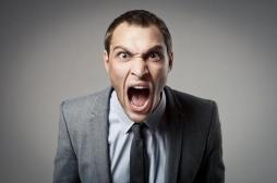 Cerveau : les neurones responsables de l'agressivité enfin identifiés par des chercheurs