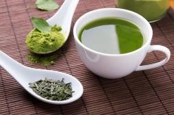 Le thé vert n'a pas de vertus anti-cancer, ni en prévention ni en soin