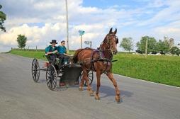 Impact de la 5G sur la santé : et si les Amish avaient raison ?