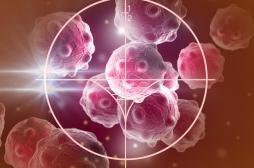Un vaccin prometteur contre le cancer bientôt testé sur l'Homme