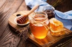 Allergie aux pollens : pourquoi il est fortement recommandé d'éviter la gelée royale et le miel ?