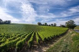 Pays de la Loire : les décès avant 65 ans plus nombreux chez les hommes que chez les femmes