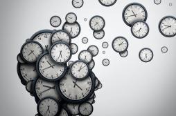La région du cerveau à l'origine de notre perception du temps identifiée