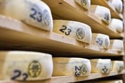 Salmonelle : des fromages contaminés de Morbier et Mont-d'Or ont tué 10 personnes entre 2015 et 2016