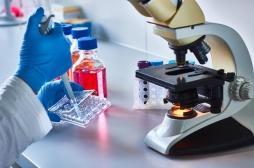 Un vaccin prometteur pour les patients atteints d'un cancer HER2-positif