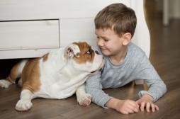 Le chien aide le traitement des enfants atteints de trouble du langage