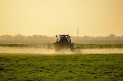 Glyphosate: ce que contient vraiment le rapport parlementaire polémique