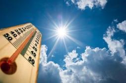 Alerte aux fortes chaleurs : comment s'en prémunir ?
