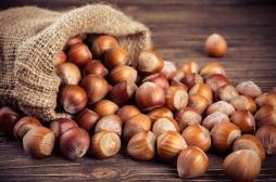 """Allergies alimentaires : rappel de """"Cracotte chocolat"""" pouvant contenir de la noisette"""