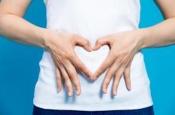 Une bactérie intestinale pourrait limiter les problèmes cardiovasculaires