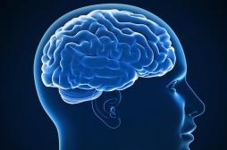Epilepsie : un enfant de 6 ans soigné grâce à l'ablation d'une partie de son cerveau