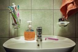 Savons, gels douche, dentifrices : leur composition rend les bactéries résistantes à nos antibiotiques