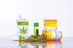 Cannabis thérapeutique : l'Agence du médicament lance une évaluation et rendra son avis en décembre