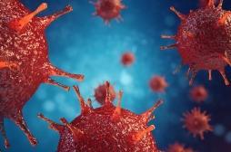 Grippe : le nombre de morts grimpe à 2800