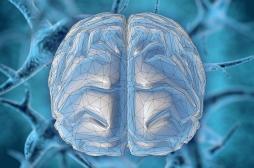 Coronavirus : le Covid-19 pourrait-il infecter le système nerveux central ?