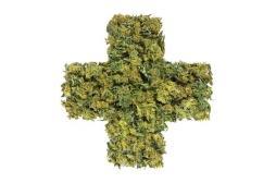 Etats-Unis : des parents perdent la garde de leur fils pour avoir traité son épilepsie sévère avec du cannabis