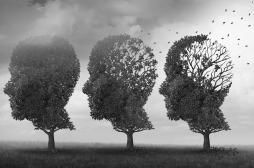 Alzheimer : la luminothérapie pourrait préserver les cellules du cerveau