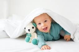 La dénomination guide la façon dont les nourrissons de 12 mois encodent et mémorisent les objets