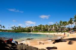 Hawaï : un parasite à l'origine de 6 méningites sévères