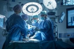 Etats-Unis : la crise des opioïdes fait augmenter le nombre de greffes
