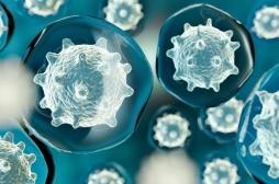 Cancer : l'apparition des métastases est liée à la génétique